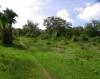 Vue general zone des terrains