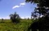 thumb_164_imgp5804kopie.jpg