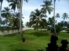 Gazon jusqu'a la plage
