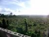 Vue Est terrain 33596m2