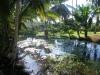 Petit lac naturel