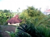 Vue sur jardin tropical et ocean