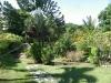 Jardin luxuriant