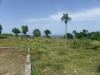 Terrains du projet