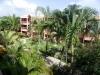 Vue sur jardin tropical