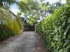 vialetto di accesso villa residence sosua repubblica dominicana