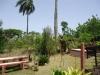 Giardino tropicale  della villa sulle colline di Sosua