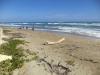 Grond aan strand Cabarete