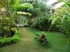 Exotische tuin