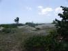 Kleine duine aan strand
