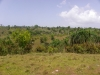 Heuvels achterland
