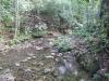 Rivier loop door landgoed