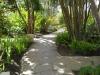 Wandelpaden in tuin