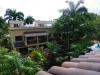 В окружении тропической зелени