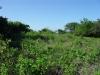 участок земли продается Сосуа
